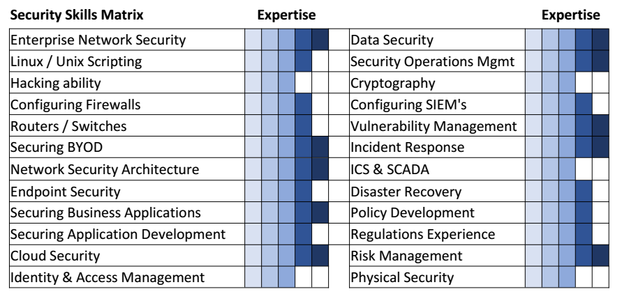 Secruity Matrix Fortify Experts
